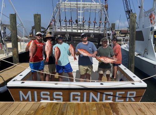 Miss Ginger