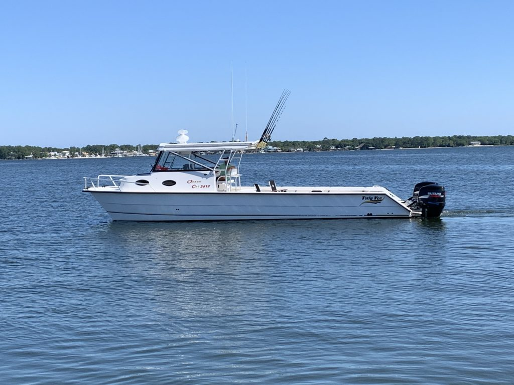 Ocean Cat With Poles In The Water