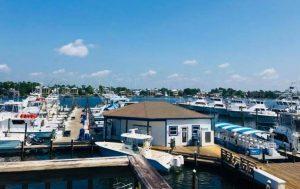 Zeke's Dock Store aerial view